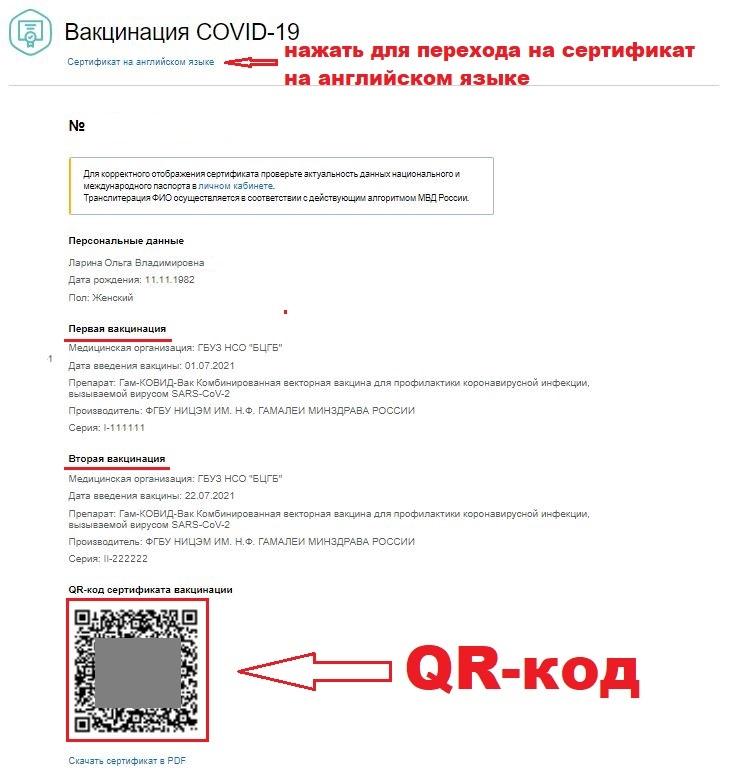 Три способа получения QR-кода - где найти на госуслугах, как скачать и установить на телефон